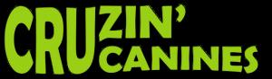 Cruzing Logo Shop