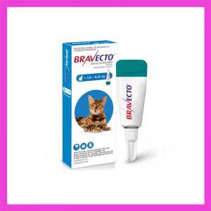 Bravecto Medium Cat 2.8-6.25kg Spot On Tick & Flea