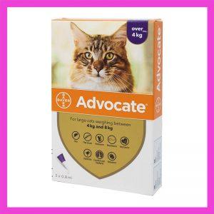 Advocate Cat Tick, Flea & Worm Spot-On Treatment – over 4kg