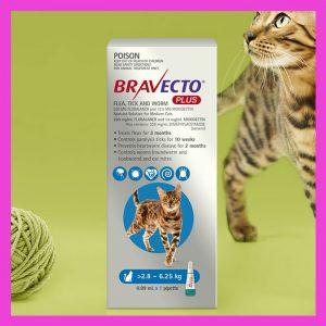 Bravecto Plus Medium For Cats 2.8- 6.25kg Blue