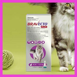 Bravecto Plus Large For Cats 6.25 – 12.5kg Purple